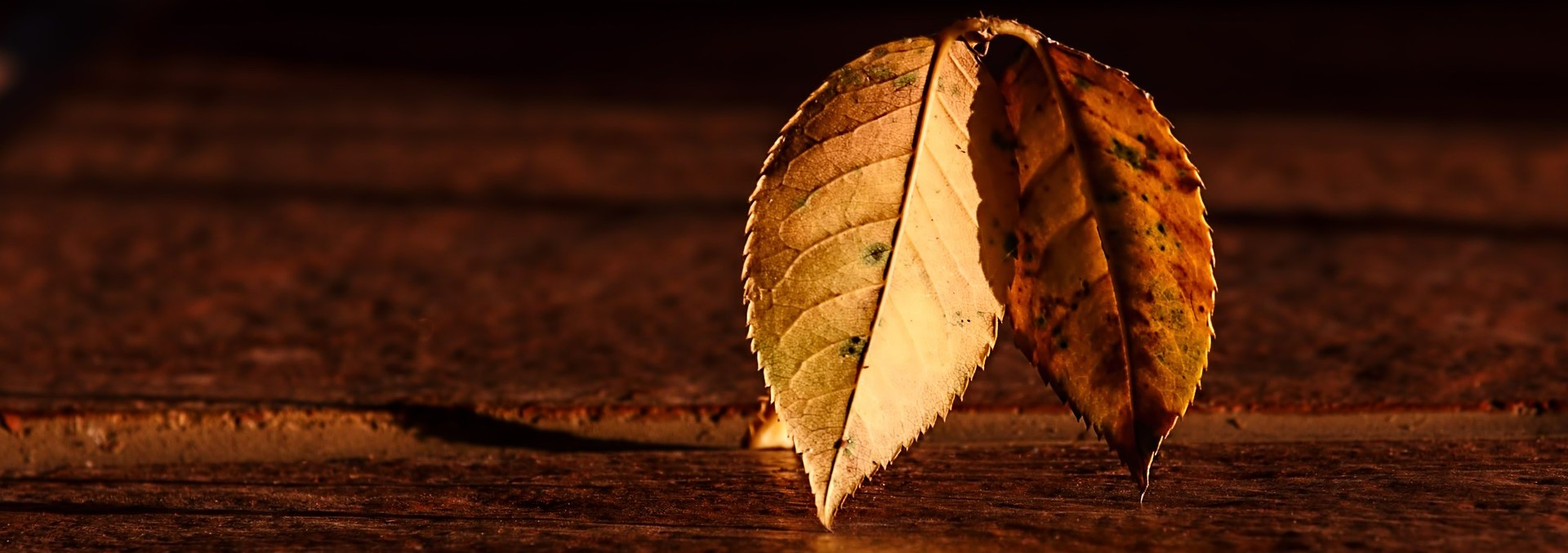 Working with the Autumn equinox